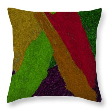 Throw Pillow featuring the digital art Colorful by Michelle Audas