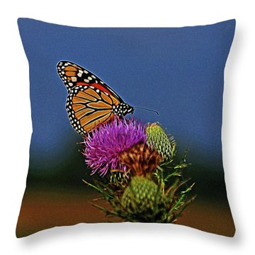 Colorful Monarch Throw Pillow