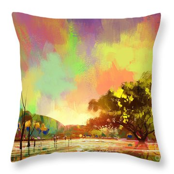 Colorful Natural Throw Pillow