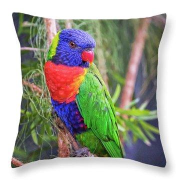 Colorful Parakeet Throw Pillow