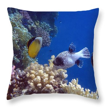 Colorful Red Sea Fish And Corals Throw Pillow