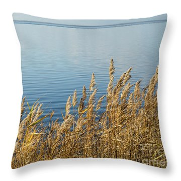 Colorful Reeds Throw Pillow