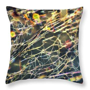 Rainbow Network Throw Pillow