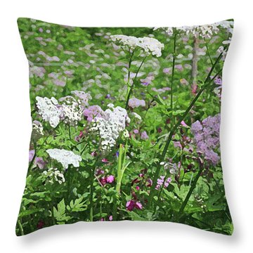 Colorful Spring Flowers In Switzerland Meadow Throw Pillow