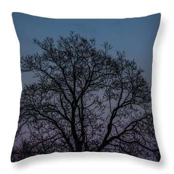 Colorful Subtle Silhouette Throw Pillow