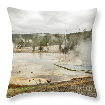 Throw Pillow featuring the photograph Colorful Thermal Pool by Sue Smith