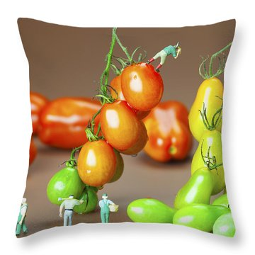 Throw Pillow featuring the photograph Colorful Tomato Harvest Little People On Food by Paul Ge