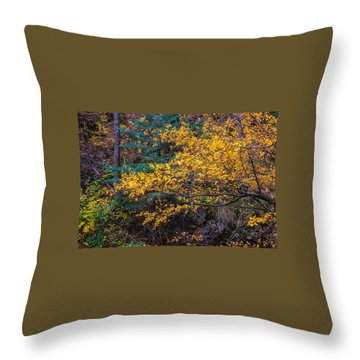 Colorful Trees Along The Creek Bank Throw Pillow