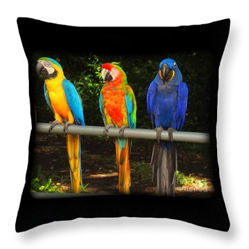 Colorful Trio Throw Pillow