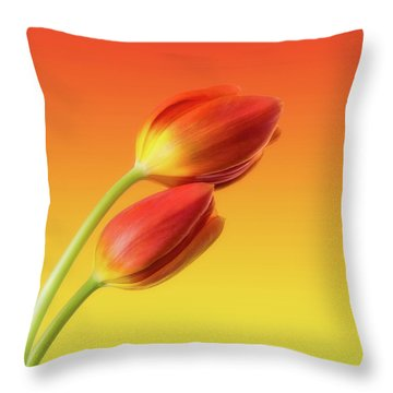 Colorful Tulips Throw Pillow by Wim Lanclus