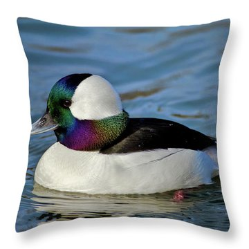 Colorful Waterfowl Throw Pillow