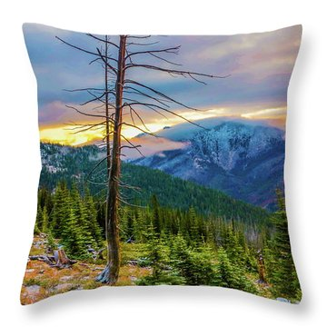 Colorfull Morning Throw Pillow