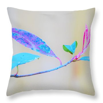 Colorfully Designed Throw Pillow