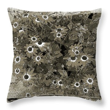 Color Me, Please Throw Pillow by Barbara R MacPhail