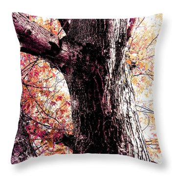 Colors And Texture  Throw Pillow