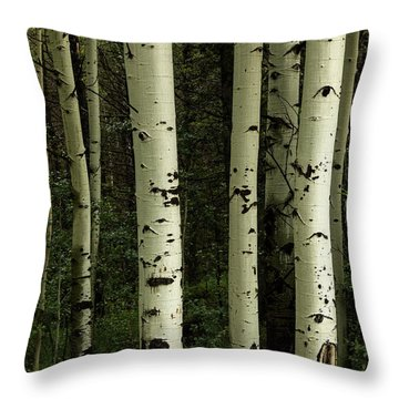 Throw Pillow featuring the photograph Colors And Texture Of A Forest Portrait by James BO Insogna