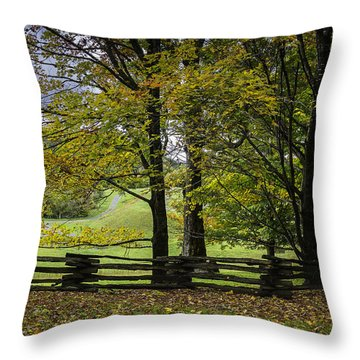 Colors At Mac Rae Field Throw Pillow