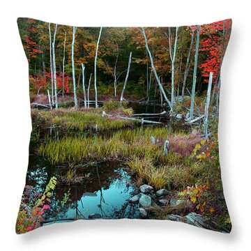 Colors By The Stream Throw Pillow by Joseph G Holland