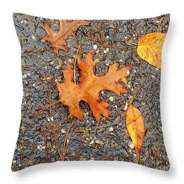 Colors Of Autumn In Montreal Throw Pillow