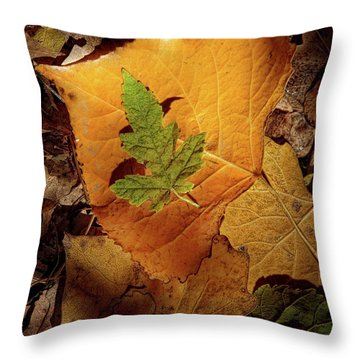 Throw Pillow featuring the photograph Colors Of Autumn by Marie Leslie