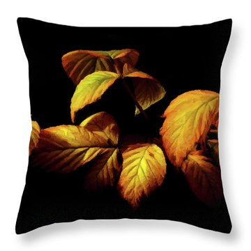Colors Of Autumn Memories  Throw Pillow by David Dehner