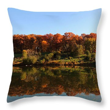Colors Of Autumn Throw Pillow by Teresa Schomig