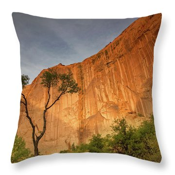 Colors Of Bliss Throw Pillow