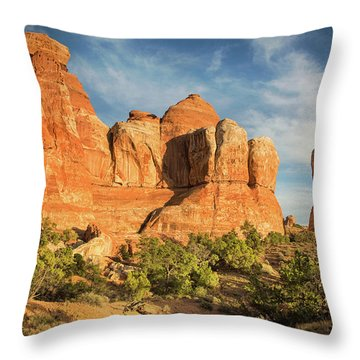 Colors Of Chesler Park Throw Pillow