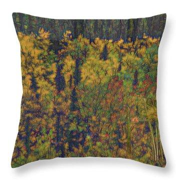 Colors Of Denali Throw Pillow