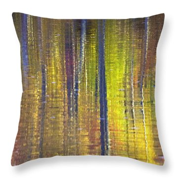 Colors Of Fall 01 Throw Pillow