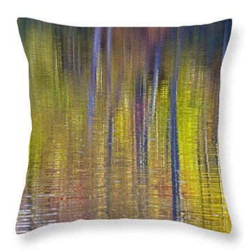 Colors Of Fall 02 Throw Pillow