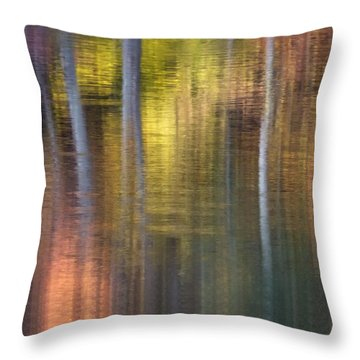 Colors Of Fall 04 Throw Pillow