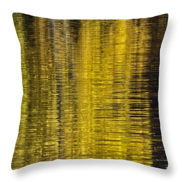 Colors Of Fall 05 Throw Pillow