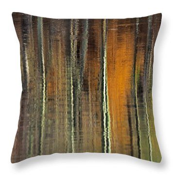 Colors Of Fall 06 Throw Pillow
