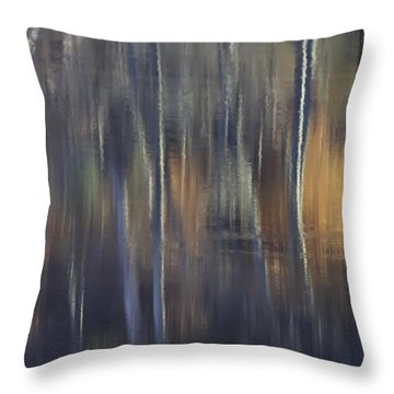 Colors Of Fall 07 Throw Pillow