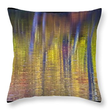 Colors Of Fall 08 Throw Pillow