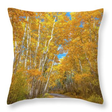 Throw Pillow featuring the photograph Colors Of Fall by Darren White