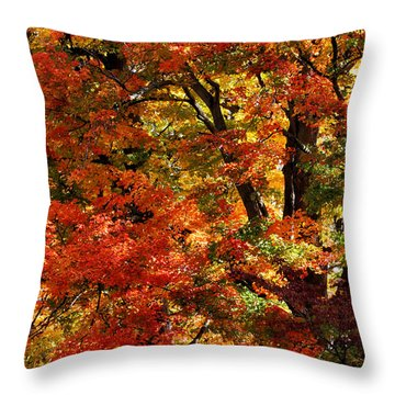 Throw Pillow featuring the photograph Colors Of Fall by William Selander