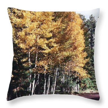 Throw Pillow featuring the photograph Colors Of Greer by Juls Adams