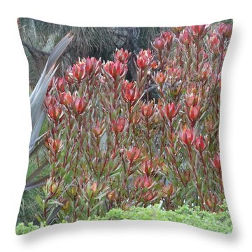 Colors Of Irish Beach Throw Pillow