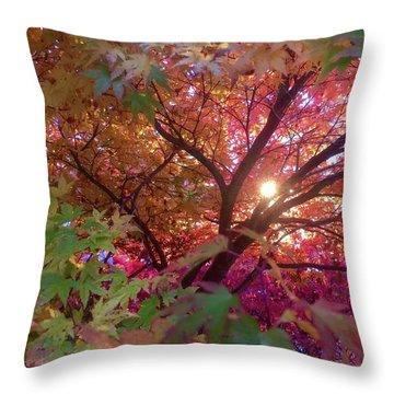 Colors Of Joy Throw Pillow by Karen Horn