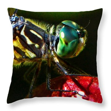 Throw Pillow featuring the photograph Colors Of Nature - Dragonfly On A Pitcher Plant 007 by George Bostian