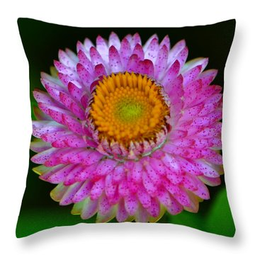 Throw Pillow featuring the photograph Colors Of Nature - Grand Opening 001 by George Bostian