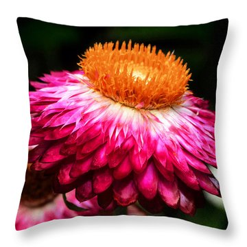 Throw Pillow featuring the photograph Colors Of Nature - Grand Opening 002 by George Bostian