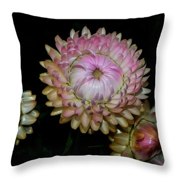Throw Pillow featuring the photograph Colors Of Nature - Grand Opening Stages 001 by George Bostian