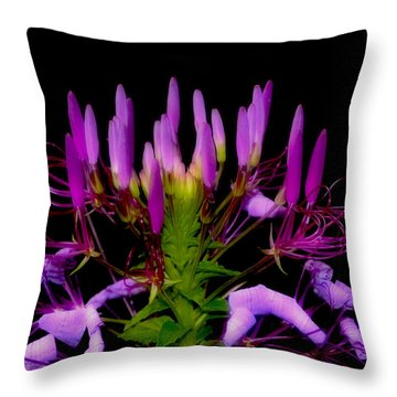 Throw Pillow featuring the photograph Colors Of Nature - Lavender 001 by George Bostian