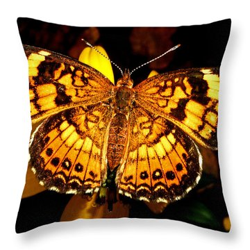 Colors Of Nature - Painted Lady Butterfly 002 Throw Pillow