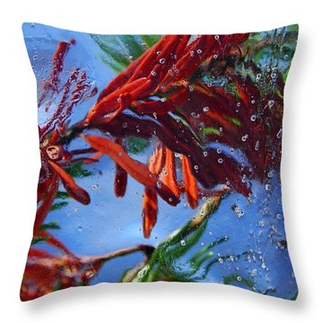Colors Of Nature Throw Pillow by Sami Tiainen