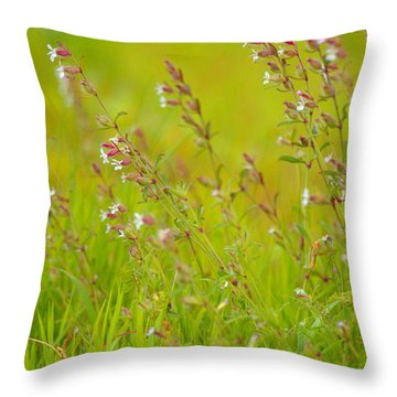 Colors Of Spring Throw Pillow by Rachel Mirror