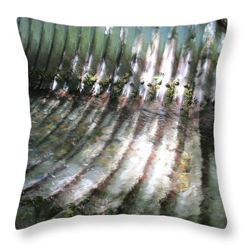 Throw Pillow featuring the photograph Colors Of The Culvert by Marie Neder